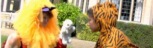 A lion, a tiger and an owl facing off, in a video from 2011.